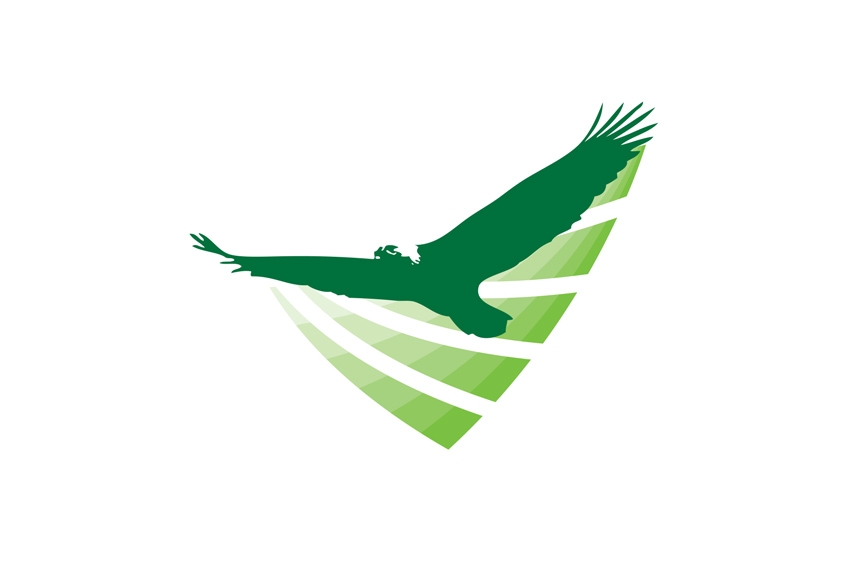 Green Eagle Communications Icon